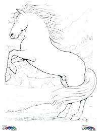 Realistic Horse Coloring Pages Mustang Horse Coloring Pages