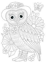 Owl Coloring Page Printable Color Owls Barn Owl Coloring Page Hard