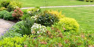 Small Picture Anne Macfie Garden Design Anne Macfie Your Garden Your Way