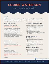 Resumes For 2017 Examples Of Excellent Resumes 24 Best Of 24 Top Resume Samples 24 22