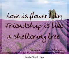 Friendship quotes - Love is flower like; friendship is like a ...