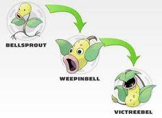 Ranking The Pokemon Go Evolutions Pokemon World