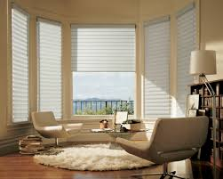 Nice Window Treatments For Bay Windows