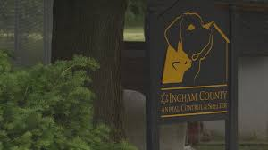 Image of: Michigans Wilxcom State Releases Report Of Ingham Co Animal Control Shelter