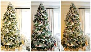 100  Christmas Tree Types Artificial   60 Best Christmas Tree Types Of Christmas Tree Lights
