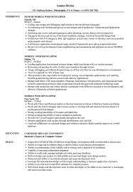 Web Designer Resume Web Designer Resume Examples Wwwfungramco 98