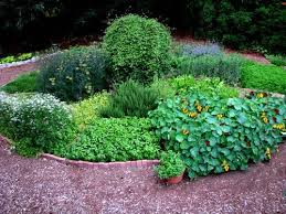 Small Picture 45 best gardening herb gardens images on Pinterest Herbs garden
