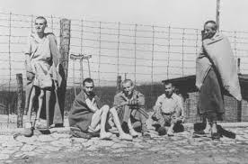 Image result for nazi camp photos