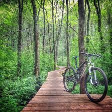 Nor'Easter Backcountry — Bridges in Burlington Landlocked Forest, MA.