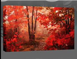 the red leaves of the autumn forest single canvas 20x30