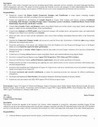 Consulting Resume And Cover Letter Bible Pdf Professional Resume