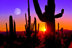 Scottsdale surplus lines insurance company. Scottsdale Arizona Is Becoming A Hotspot For Jobs Careers In Government