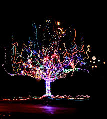 christmas lights ideas homesfeed. majestic postmodern outdoor christmas tree the gracious posse lights ideas homesfeed e