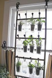 indoor garden from hooks and rods