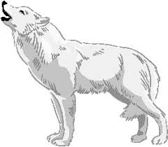 white wolf howling drawing. Wonderful Wolf White Wolf Clipart Wolf Howl Intended Howling Drawing D