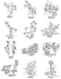 Pin by Phoebe ODonnell on Tattoos | Taurus tattoos, Zodiac tattoos, Body  art tattoos