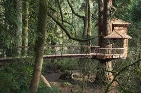 treehouse masters treehouse point. Lodging At Treehouse Point In Fall City Washington Masters E