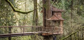 Perfect Treehouse Masters Point Photos At In Fall City Washington Inside Innovation Design