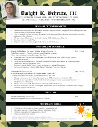 Professionally Written Resume Samples Generic Useless Resume Pongo Blog 22