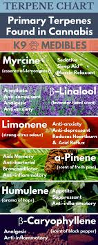 Terpenes Terpenes Chart What Are Cannabis Terpenes