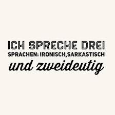 Ich Spreche Drei Sprachen Ironischsarkastisch Un Kissenhülle