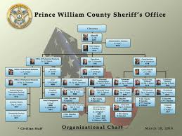 Organization Chart Organization Chart 6