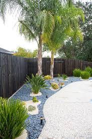 planting around palm trees round designs