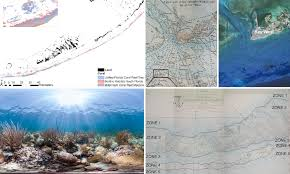 240 Year Old Nautical Maps Used To Track Coral Loss Daily