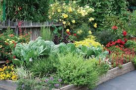 Small Picture 17 Creative Vegetable Garden Designs To Inspire Your Garden Revamp