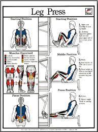 Leg Press Chart Leg Press Machine Poster