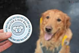 mydoglikes walter s dog balm review