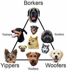 Borker Yippers Woofers Doggo Know Your Meme