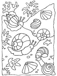 Kleurplaten Onderwater Dieren Brekelmansadviesgroep