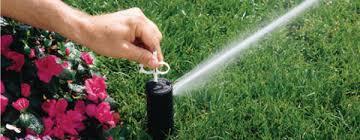 garden irrigation nj. Expert Irrigation Repair Garden Nj