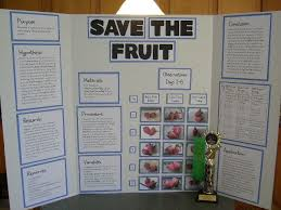 science boards for grade categories life science physical  science boards for 4 grade categories life science physical science earth and · earth and space sciencelife sciencescience fair projectsschool