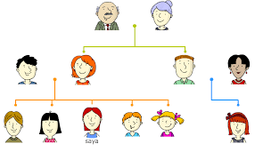 A Step By Step Guide To Making A Genogram Exploring Your Mind