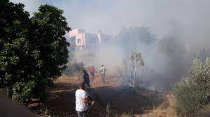 Mersin'de yangın: Bir köy boşaltıldı, 2 çoban kayıp - Son dakika haberleri