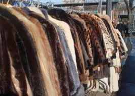 antique rac fur coats can be found in just about every thrift in toronto because they ve been donated by society las on mass for the last