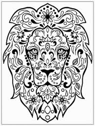 Small Picture Lions Image Gallery Lion Head Coloring Pages at Best All Coloring