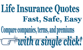Quotes About Life Insurance Delectable Online Quote Life Insurance Quotes About Life