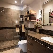 Brilliant Modern Bathroom Cabinet Colors Brown Color Shades Chic Interior For Creativity Ideas