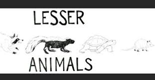 """Lesser Animals - friday at 8 est we'll be doing a livestream session to  celebrate the release of our single """"cannot hang"""". i'm looking forward to  having it out in the world,"""