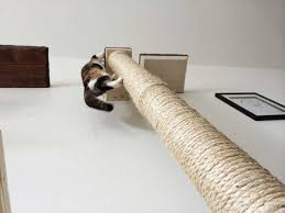 wall mounted cat furniture. vertical wallmounted sisal pole wall mounted cat furniture