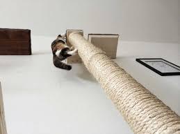 wall mounted cat furniture. wonderful wall vertical wallmounted sisal pole inside wall mounted cat furniture