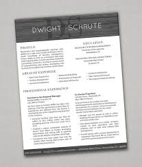 Resumes that actually pass the 6 second test! All resumes + matching cover  letters =