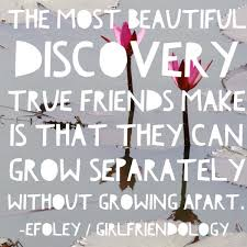 Quote About Friendship Enchanting Friendship Quote True Friends