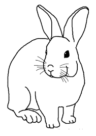 Rabbit coloring pages are widely loved by kids of all ages, help them to develop their habit of coloring and painting, introduce them new colors, improve the creativity and motor skills. Coloring Pages Rabbit Coloring Page For Kids