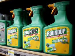 file photo monsanto s roundup weed atomizers are displayed for at a garden at