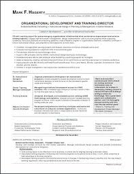 First Resume Samples Magnificent First Job Resume Examples Lovely Nursing Resume Examples Awesome