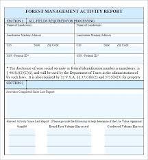 format of a management report management information report template management report
